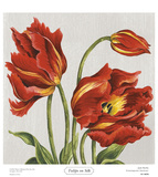 Tulips on Silk Prints by Judy Shelby