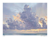 Florida Suite 3 Giclee Print by David Jenks