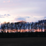 Winter Sunset Square II Posters by Alan Hausenflock