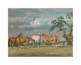 Rose, Wildbird, Peggy and Stockings Premium Giclee Print by Sir Alfred Munnings