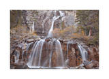 Tangle Falls II Limited Edition by Donald Paulson