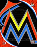 Miami Marlins 2012 Team Logo Photo