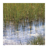 River Reeds I Giclee Print by Joy Doherty