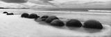 Moeraki Boulders Panorama Art by Monte Nagler