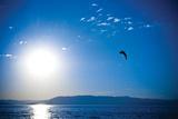 Erin Berzel - Flathead Gölü - Reprodüksiyon