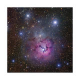 The Trifid Nebula in Sagittarius Limited Edition by Robert Gendler