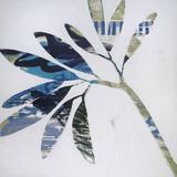 Tropical Landscape III Kunstdrucke von Brenda Bredvik