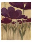 Summer Bloom II Prints by  Maria
