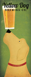 Ryan Fowler - Yellow Dog Brewing Co. - Reprodüksiyon