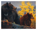 The Cinnamon Bear Poster by Nancy Glazier
