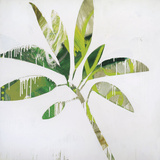 Tropical Landscape IV Poster by Brenda Bredvik