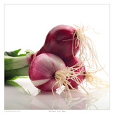 Red Onions Poster by David Wagner