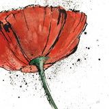 Not a California Poppy I Poster van Chris Paschke