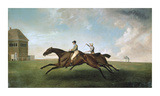 Racing at Newmarket Premium Giclee Print by George Stubbs