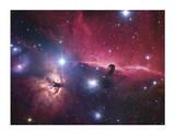 Horsehead Nebula Giclee Print by Robert Gendler