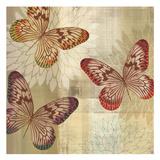 Tropical Butterflies I Plakater af Tandi Venter