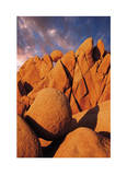 Joshua Tree Sunset I Limited Edition by Donald Paulson