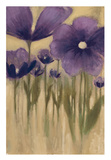 Summer Bloom I Prints by  Maria