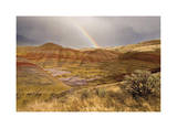 Painted Hills and Rainbow Giclee Print by Donald Paulson
