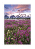 Fairweather Range I Limited Edition by Donald Paulson