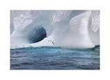 Iceberg and Seabirds Edition limitée par Donald Paulson