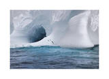 Iceberg and Seabirds Giclee Print by Donald Paulson