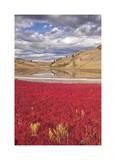 Lac du Bois Grasslands Park II Limited Edition by Donald Paulson