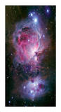 The Great Nebula in Orion Limited Edition by Robert Gendler