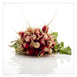Irish Breakfast Radishes Print by David Wagner