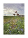 Patos Island Lighthouse I Limited Edition by Donald Paulson