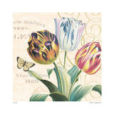 La Tulip Limited Edition by Paula Scaletta