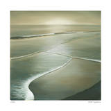 Waves I Giclee Print by Deac Mong