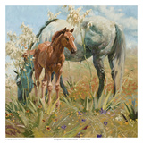 Springtime in the Llano Estacado Print by Bruce Greene