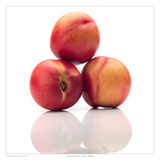 Jersey Nectarine Prints by David Wagner