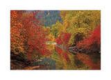 Nason Creek IV Giclee Print by Donald Paulson