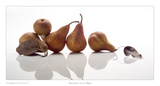 Bosc Pears Print by David Wagner