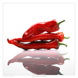 Sugar Hot Peppers Prints by David Wagner
