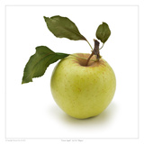 Green Apple Prints by David Wagner