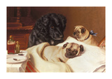 Retriever and Two Pugs Premium Giclee Print by Horatio Henry Couldery