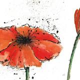 Chris Paschke - Not a California Poppy III Obrazy
