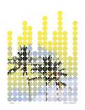Palmiers de ville I Edition limitée par Matthew Lew