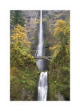Multnomah Falls Limited Edition by Donald Paulson