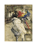 The Aviary, Clinton Premium Giclee Print by Joseph Crawhall