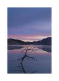 Painted Hills Lake at Dawn II Limited Edition by Donald Paulson