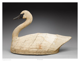 NC Canvas Swan Poster by Robert Shaw