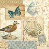 Coastal Collage I Prints by  Pela