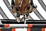 Rollerblades - Sulle ali del vento Poster di Lisa Cueman