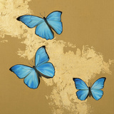 Cerulean Butterfly II Posters by Joanna Charlotte