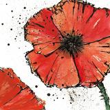 Chris Paschke - Not a California Poppy IV Plakát