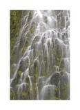Proxy Falls III Limited Edition by Donald Paulson